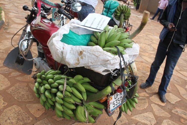 AGL - Uganda - Nmugongo. Food distribution 03
